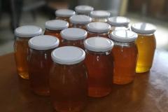 agriturismo la mongolfiera - invasettamento del miele