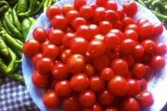 agriturismo la mongolfiera - pomodori e peperoncini