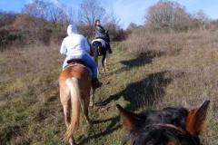 agriturismo la mongolfiera - passeggiata a cavallo