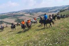 agriturismo la mongolfiera - cavalli equitazione