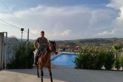 agriturismo la mongolfiera - cavallo nel complesso agrituristico
