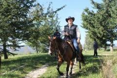 agriturismo la mongolfiera - equitazione Fragneto Monforte Benevento