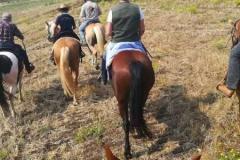 agriturismo la mongolfiera - equitazione Fragneto Monforte