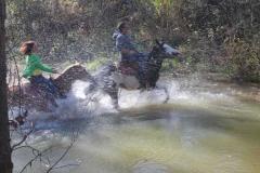 agriturismo la mongolfiera - equitazione acqua