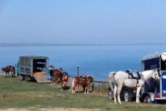agriturismo la mongolfiera - equitazione escursione Termoli