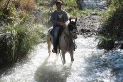 agriturismo la mongolfiera - equitazione escursione fiume