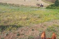agriturismo la mongolfiera - equitazione i cavalieri della mongolfiera