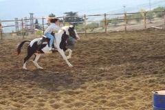 agriturismo la mongolfiera - equitazione palio cavallo