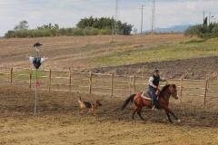 agriturismo la mongolfiera - equitazione palio