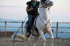 agriturismo la mongolfiera - palio Fragneto Monforte