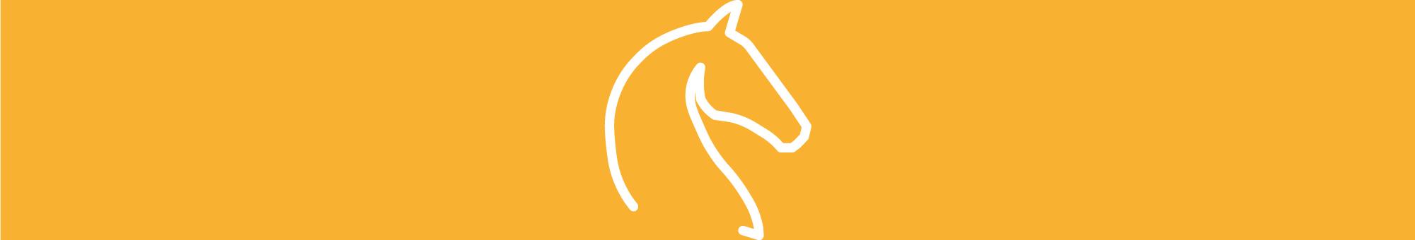 icona equitazione
