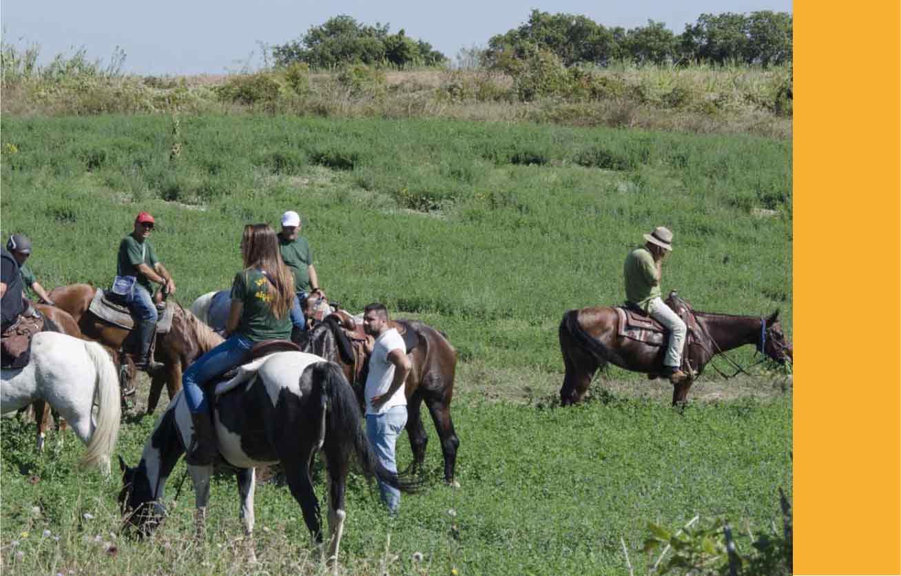equitazione agriturismo la mongolfiera Benevento